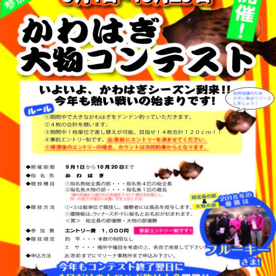 .+゜*。:゜9月1日~《2018 かわはぎ大物コンテスト》開催いたします゜:。*゜+