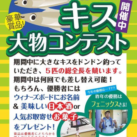 5/1(水)~【2019 キス大物コンテスト】スタートします!